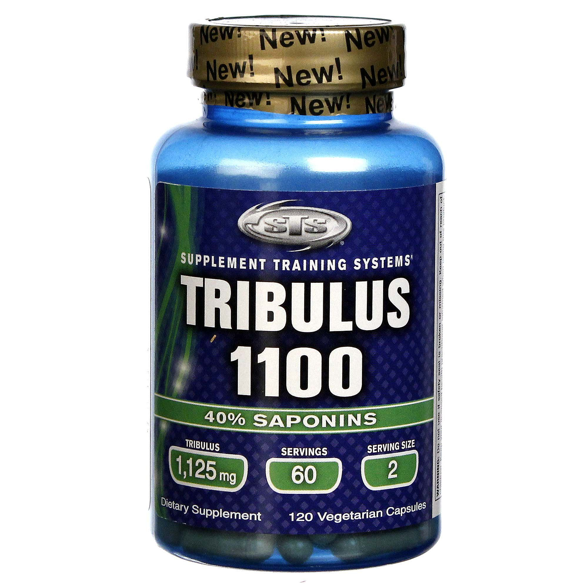 Tribulus terrestris | Power Explosive