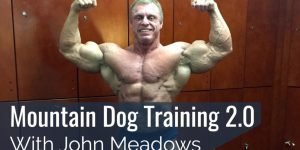 Meadows dog